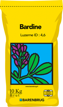 Bardine