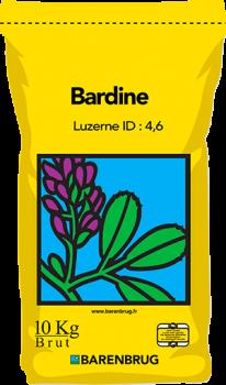 Bardine Yellow Jacket