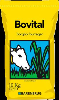 Bovital