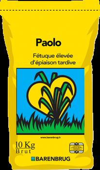 Paolo Activ Plus