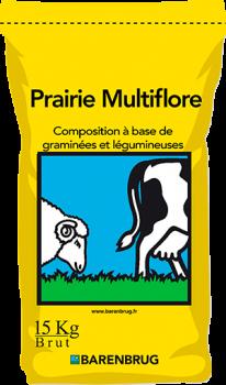 Prairie Multiflore ZS